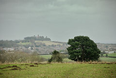 Oxfordshire landscape on overcast day. Wiuth bush in foreground and folly in background Stock Images