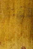 Oxidação colorida de seda Fotos de Stock