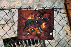 Oxidado beware do sinal do cão imagens de stock