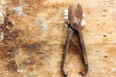 Oxidado scissor Fotos de Stock Royalty Free