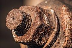 Oxidados velhos encantam o parafuso imagens de stock royalty free