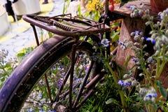 Oxidados viejos y cercado funcional ruedan no más adentro un jardín con las flores florecientes Fotos de archivo