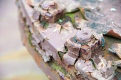 Oxidando e descascando os parafusos e os parafusos Fotografia de Stock Royalty Free