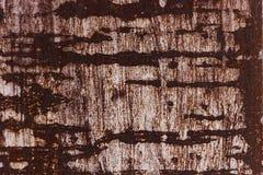 Oxidazed metallyttersida som gör en abstrakt textur, hög upplösning Fotografering för Bildbyråer