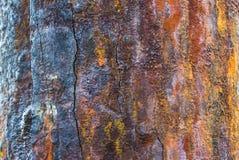 Oxiderad danande för metallyttersida Arkivbilder