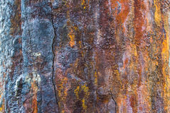 Oxidized metal surface making Stock Images