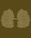 Oxigênio Imagem de Stock Royalty Free