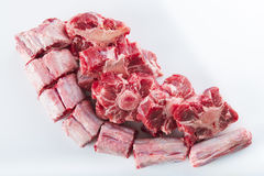 Oxtail isolated on a white background Stock Images