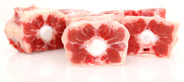 Oxtail Over White Stock Images