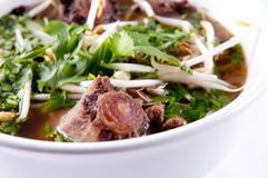 Oxtail pho soup Stock Image