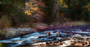 Oxtongue Rapids Stock Image