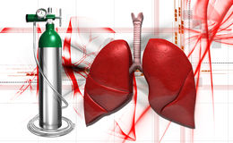 Oxygen cylinder and human lungs Stock Image