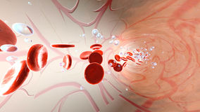Oxygen molecules and Erythrocytes floating in the blood stream Royalty Free Stock Images