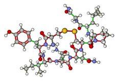 Oxytocin - love hormone molecular structure Stock Images