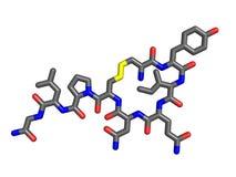 Oxytocin molecule Stock Images