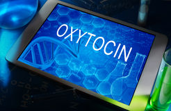 Oxytocin. The word oxytocin on a tablet with test tubes Stock Image