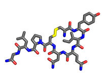 Oxytocinmolekyl Arkivbilder