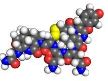 Oxytocinmolekyl Arkivfoto