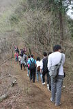 Oyama nationalpark Arkivfoton