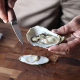 Oyster. A man is peeling an oyster shell Stock Photography