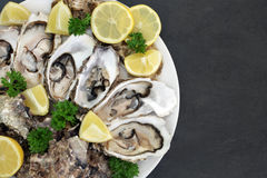 Oyster Aphrodisiac Food. On a porcelain plate with lemon fruit and parsley herb on slate background royalty free stock photo