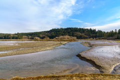 Oyster Bay Low Tide. Washington State Stock Images