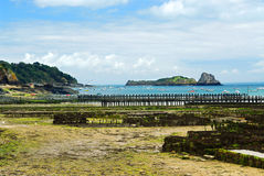 Oyster beds in Cancale, France Royalty Free Stock Photography