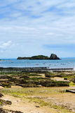 Oyster beds in Cancale, France Stock Images