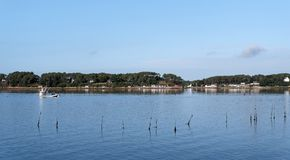 Oyster boat in the Morbihan gulf Royalty Free Stock Photography