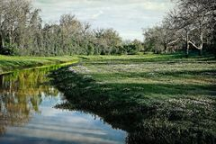 Oyster Creek Meadow and Bridge Stock Photography