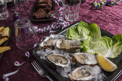 Oyster dinner Royalty Free Stock Images