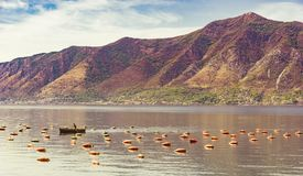 oyster farm in a bay surrounded by mountains stock photos