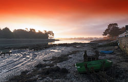 Oyster farm in Finistere coast Royalty Free Stock Photography