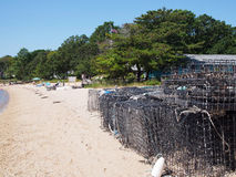 Oyster farm Royalty Free Stock Photography
