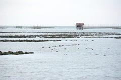 Oyster farm seascape Royalty Free Stock Photos