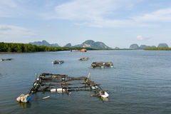 Oyster farm, South of Thailand Stock Photo