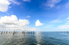 Oyster Farm in Thailand with blue clear sky and cl Stock Photography