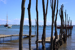 Oyster farming. In the Bassin of Arcachon in France Royalty Free Stock Photos