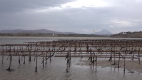 Oyster farming and oyster traps, floating mesh bags by Carrickfinn in County Donegal, Ireland.  stock video footage
