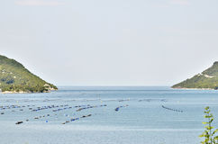 Oyster farms in a bay of the Mediterranean Sea Royalty Free Stock Photo