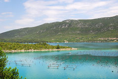 Oyster farms in a bay of the Mediterranean Sea Royalty Free Stock Photos