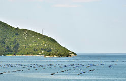 Oyster farms in a bay of the Mediterranean Sea Royalty Free Stock Image
