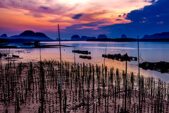 The Oyster Farms at Fisherman village at Samchong-tai, Phang Nga. Thailand Royalty Free Stock Photos