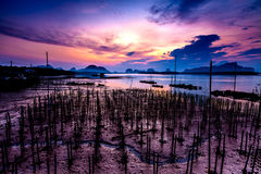 The Oyster Farms at Fisherman village at Samchong-tai, Phang Nga. Thailand Royalty Free Stock Images