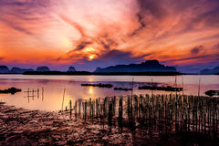The Oyster Farms at Fisherman village at Samchong-tai, Phang Nga. Thailand Royalty Free Stock Image