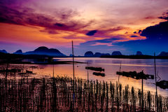 The Oyster Farms at Fisherman village at Samchong-tai, Phang Nga. Thailand Stock Photography