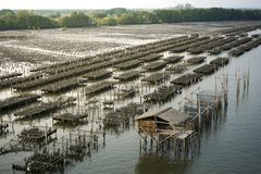 Oyster farms in the sea at the province. Chanthaburi, Thailand stock photography