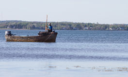 Oyster Fishing Royalty Free Stock Photos
