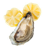 Oyster. Fresh raw oyster with lemon slices isolated on white background Stock Photo