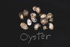 Oyster fresh zinc seafood appetizer blackboard tasty Stock Photos